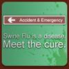 Swine Flu Exterminator Game Online